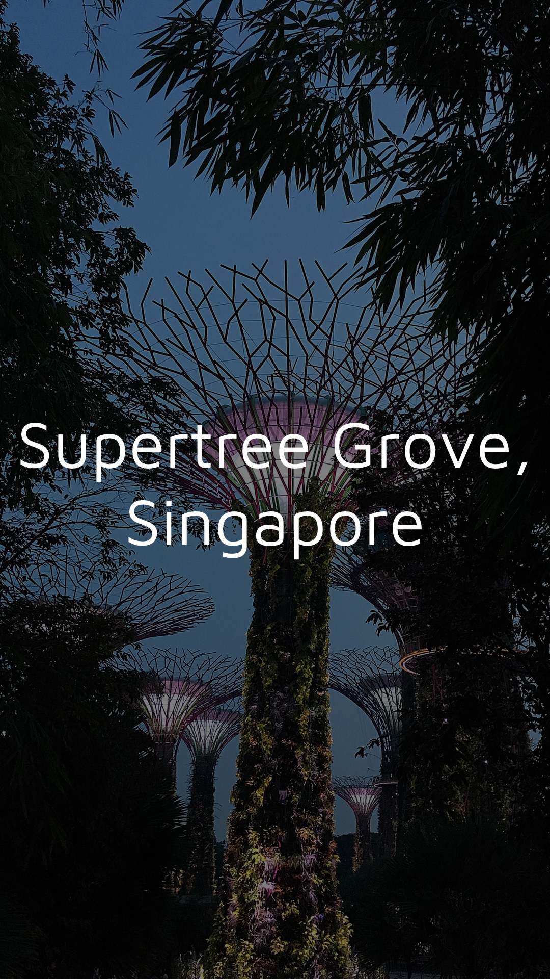 Singapore Supertree Grove 1080x1920 Dark