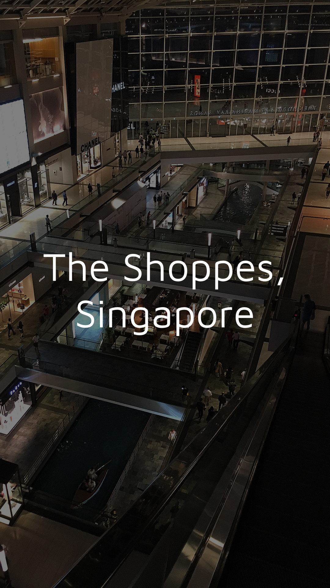 The Shoppes Singapore 1080x1920 Dark