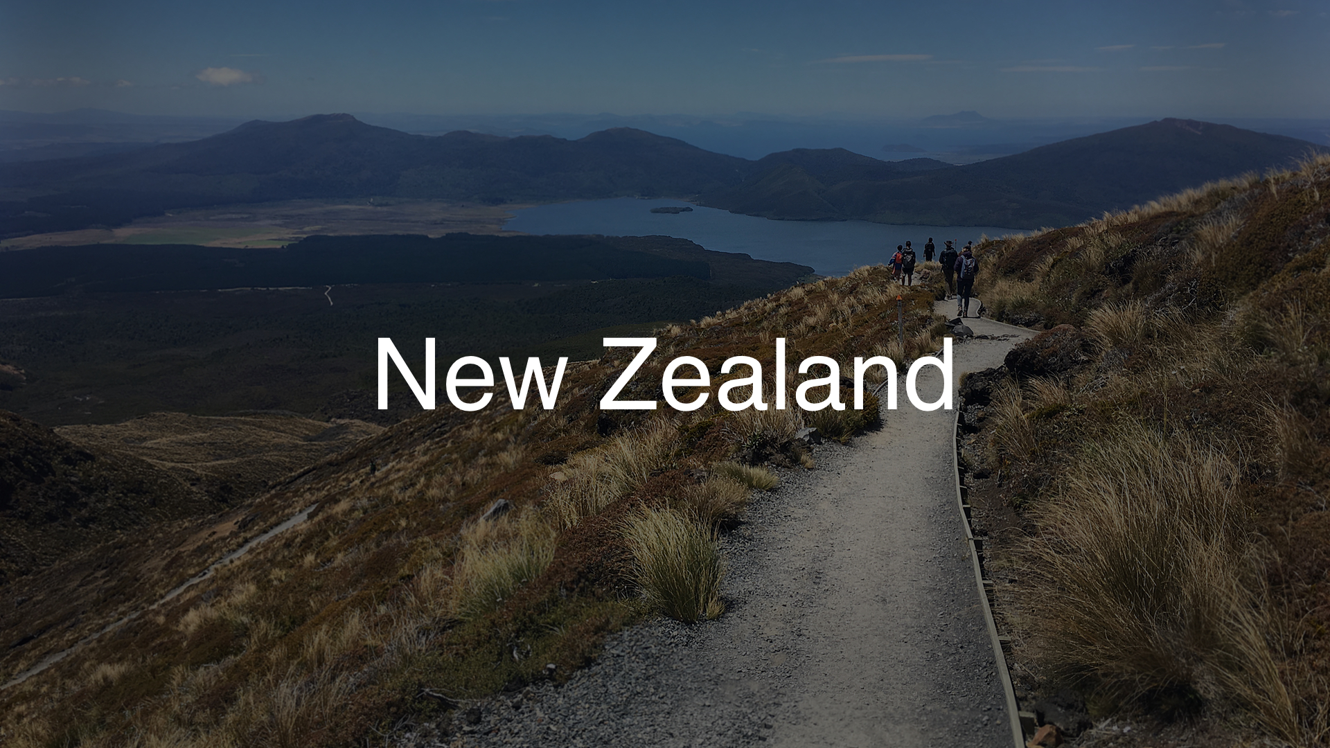 New Zealand Gallery Header 1920x1080 Dark